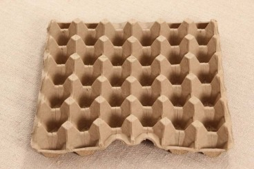 compostable-wheat-straw-30-egg-tray-from